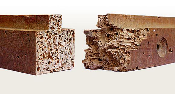 Mueble carcoma - Forjas ArtísticasForjas Artísticas